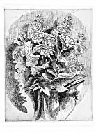 vaso con zinnie