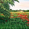 Paesaggio padano
